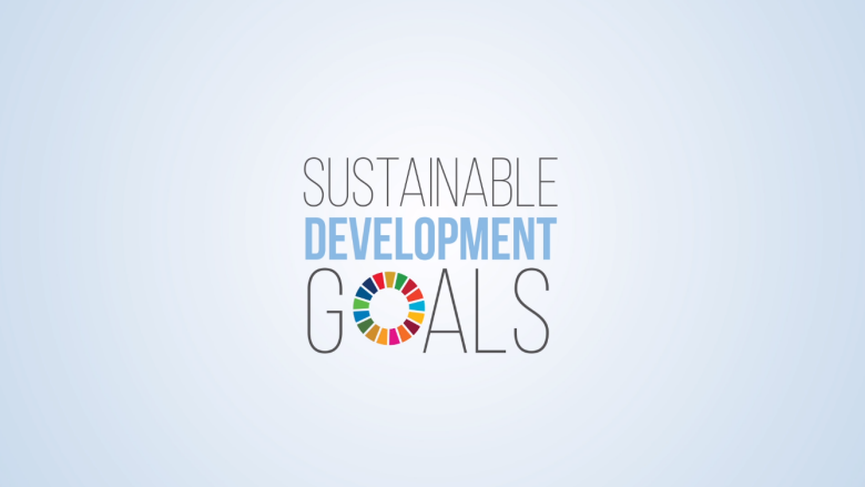 Taxation and the Sustainable Development Goals